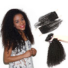 Grade 7a 3bundles afro kinky curly hair weft with Brazilian 4*4 curly closure