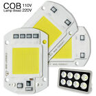 20W 30W 50W LED Floodlight COB Chip 110V 220V Integrated Smart IC Spotlight