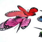 B200- Butterflies Weddings Crafts, Cake Topper Decorations Cards