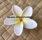 Hawaiian Plumeria  Flower Hair Clip Pick White Yellow Weddin