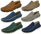 Mens Anatomic & Co Aruja Leather Casual Slip On Loafer Shoes