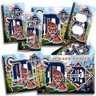 DETROIT TIGERS COMERICA STADIUM BG BASEBALL LIGHT SWITCH OUTLET WALL PLATE COVER on Ebay
