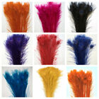 "BLEACHED PEACOCK TAILS Feathers 30""-40'' Many Colors 10-200 Pcs Halloween/Party"