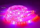 DC12V 5M SMD 5050 LED Strip Grow Light Lamp Full Spectrum For Plant Veg Flowers