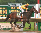"Rachel Alexandra 2009 Haskell Invitational 1 Photo 8"" x 10 - 24"" x 30"""