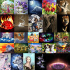 5D Diamond Painting Animals Beauty Embroidery Cross Crafts Stitch DIY Home Decor