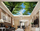 Everygreen Trees Full Wall Mural Photo Wallpaper Print 3D Ceiling Decor Home
