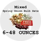 2018 Mixed Spring Onion Bulb Sets - NON-GMO! HEIRLOOM PLANTS, SEEDS. FREE SHIP!