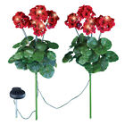 Geranium Flowers Solar Light Garden Stakes, Set Of 2, By Collections Etc