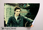 EDWARD TWILIGHT GIANT WALL ART POSTER A0 A1 A2 A3