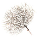 Peacock Shape Artificial Coral Branch Faux Plant Craft for Home Chic Decor
