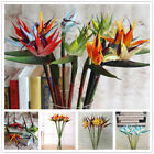 Large Artificial Bird Of Paradise Flowers Strelitzia Wedding Home Decor 60cm New