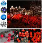 50/80/100 LED Red Berry Christmas Wedding Garden Party String Window Tree Lights