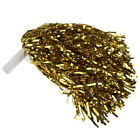 Party Costume Sports Cheerleader Party Favors Flower Ball Pom Poms Hot New I7Y2)