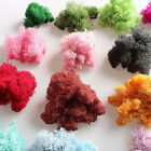 Decor Home Plant Dried Flower Natural Grass Norwegian Reindeer Moss Decoration