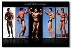 Arnold Schwarzenegge Body Building Art Wall Cloth Poster Print (508)