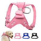 Cute Dog Strap Harness Bling Bowknot Suede Leather Walking Vest Small Medium Dog