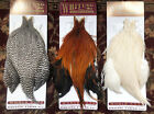 WHITING Eurohackle Whole Capes, Rare in USA - *NEW*