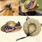 Bearded Dragon Costumes Clothes For Lizards Hat Reptile Hat Accessories Toys