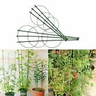 Durable 3 Rings Plant Cage Climbing Support Garden Trellis Tomato Flowers Stand
