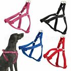 Ancol Padded Dog Harness Nylon Reflective Stitching - Ex sm -- Ex Large FREEPOST