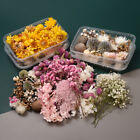 1 Box Mixed Dried Flowers Plants For Candle Epoxy Resin Jewelry Making Diy Decor