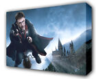 HARRY POTTER BROOMSTICK QUIDDITCH - GICLEE CANVAS ART