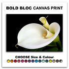 Calla Lily Flowers FLORAL  Canvas Art Print Box Framed Picture Wall Hanging BBD