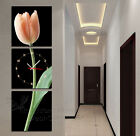 Tulip #9 Modern Home Decor Canvas Art Print Set High Quality Different Colors