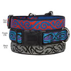 Dog Collar Tribal Scroll Casual Canine Collars  Pet