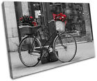 Retro Bicycle Red Vintage SINGLE CANVAS WALL ART Picture Print VA
