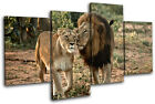 lions South Africa Animals MULTI CANVAS WALL ART Picture Print VA