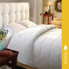 Luxury 600 Fill Power White Goose Down Duvet Insert By DownLite