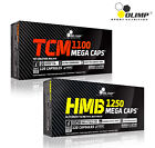 the best creatine - CREATINE MALATE + HMB 60-180 Supports The Increase Of Strength And Muscle Mass