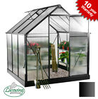 Deluxe Black Greenhouse Aluminium Frame Polycarbonate Walk In Large Lacewing