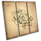 Abstract Rose Floral TREBLE CANVAS WALL ART Picture Print VA