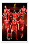 Liverpool Players 2014 / 2015 Magnetic Notice Board Includes Magnets