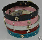 "Designer Soft Dog paw Print Diamonte Bling S-M14""-17"" Pink blue Black Silver Red"