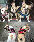 Trixie Thick Winter Harness Super Soft Fleece Puppy size to adult dog pink -blue
