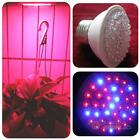 E27 110V Blue Red LED Hydroponic Lamp Garden Indoor Plant Grow Light Bulb #F8s