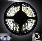 12V DC Non-Waterproof/Waterproof 60LEDs/m Strip Light 3528 SMD Fairy Light White