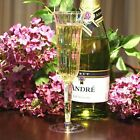 002-Event Celebration-WEDDING-PLASTIC WINE CHAMPAGNE FLUTES DISPOSABLE GLASSES!
