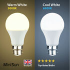 MiniSun 6W 10W LED (60W/100W) BC B22 GLS Lamp Light Bulbs Warm Cool Day White A+