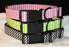 CHEVRON DESIGN DOG COLLAR  ADJUSTABLE NYLON designer fabric Med LG Super Cute!
