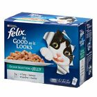 Felix Adult Pouches In Box 12 x 100g