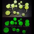 14g Glow in the Dark Surgical Steel 12mm Curved Belly Bar Two Tone Yellow/Green