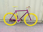 NOLOGO Purple new Single Speed freewheels bike Fixed Gear / fixie Road Bikes