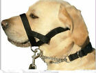 Kumfi Dogalter stops dogs from pulling Dog Puppy Calm Control Adjustable S/M/L