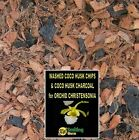 SW PROMOTION: Buy 1 get 2 Orchid Potting Mix Orchid Bark Coco Husk CHRISTENSONIA