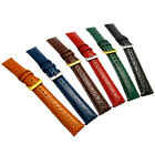 Coloured Padded Croc Grain Leather Watch Strap Band 16mm 18mm 20mm 6 Colours!
